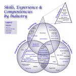 Skills & Experience